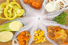Octopus with fresh vegetables Royalty Free Stock Photos