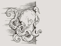 Octopus. Graphic illustration of an octopus Royalty Free Stock Image