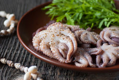 Octopus and green salad in a plate on the table Stock Photography