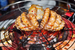 Octopus on the grill Royalty Free Stock Image