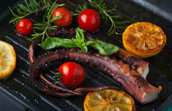 Octopus grilled with lemon Stock Photos
