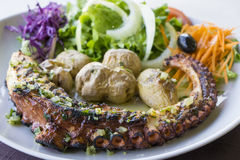 Octopus grilled with vegetables Royalty Free Stock Photography