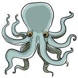 Octopus het schilderen Stock Foto