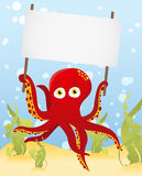 Octopus holding blank sign. Red Octopus holding blank sign Stock Images