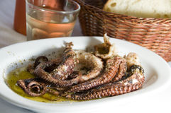 Octopus house wine Greek taverna specialty Royalty Free Stock Photos