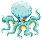 Octopus Stock Photo
