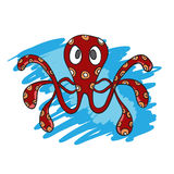 Octopus Stock Photography