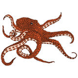 Octopus illustration Royalty Free Stock Images
