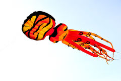 Octopus kite Stock Images