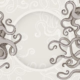 Octopus Kraken card or border with feelers Stock Images