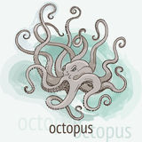 Octopus Kraken watercolor Royalty Free Stock Images