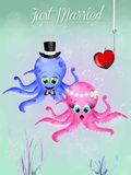 Octopus in love Stock Images