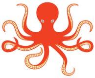 Octopus. Ocean,  and tentacles Stock Photos