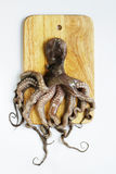 Octopus op een hakbord Royalty-vrije Stock Fotografie