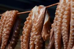Octopus op een lijn Royalty-vrije Stock Fotografie
