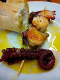 Octopus Pincho de Pulpo. Basque Country cuisine. Spanish gastronomy. Royalty Free Stock Photography