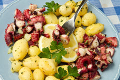 Octopus with potatoes Stock Photography