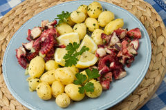 Octopus with potatoes Stock Photos