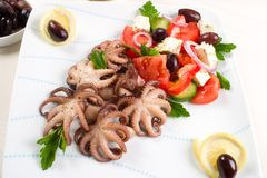 Octopus in red wine Stock Images