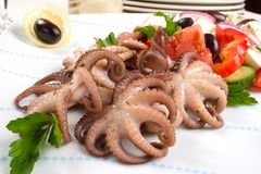 Octopus in red wine Stock Photography