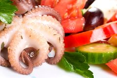 Octopus in red wine Stock Photos