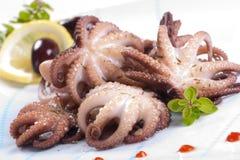 Octopus in rode wijn Stock Afbeeldingen