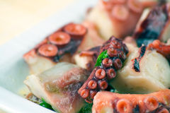 Octopus Salad Royalty Free Stock Photo