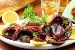 Octopus Salad. With contour of tomatoes and bread Royalty Free Stock Photography