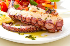 Octopus and salad Stock Photography