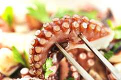 Octopus salad Royalty Free Stock Photos