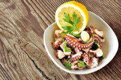 Octopus salad Stock Images