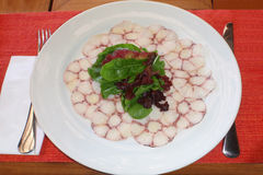 Octopus salad. Plate with octopus legs cut and green salad Royalty Free Stock Photos
