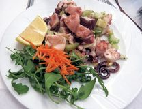 Octopus salad on white plate Stock Image