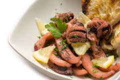 Octopus salad Royalty Free Stock Photo