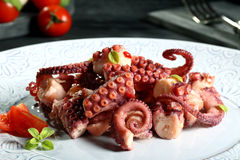 Octopus salad Stock Photography