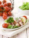 Octopus salad with tomatoes Royalty Free Stock Images