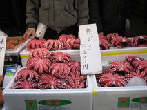 Octopus. For sale in a market in Japan stock photo