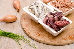 Octopus, sardines and shrimps Royalty Free Stock Photography