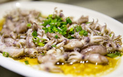 Octopus :sea food Stock Photography