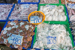 Octopus and shell in the sea market Stock Photos