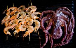 Octopus and shrimps Royalty Free Stock Images