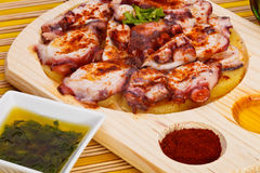 Octopus slices Royalty Free Stock Photos