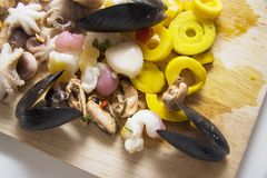 Octopus, snails, mussels and calamary Stock Image