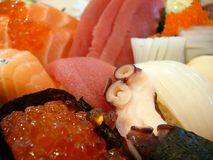 Octopus in sushi-bar. Tentacle of octopus close-up in rich colorful sushi-bar Royalty Free Stock Images