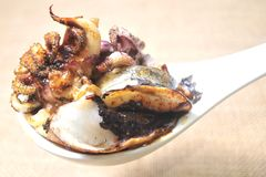 Octopus tapa from spain food little portions Royalty Free Stock Images