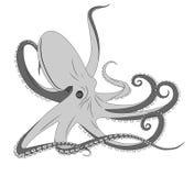 Octopus, tattoo stock illustration