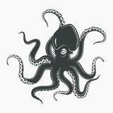 Octopus tattoo or squid marine mascot Stock Images
