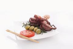 Octopus with tomato, olives & rosemary. Detail of octopus isolated on plate Stock Images