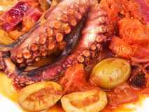 Octopus with tomato sauce and olives Royalty Free Stock Image