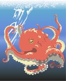 Octopus under the sea. Red octopus sinking down to the sea after chasing the sunlight Royalty Free Stock Photos